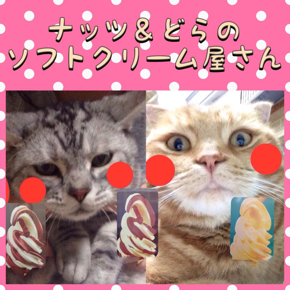 ナッツ&どらのソフトクリーム屋さん